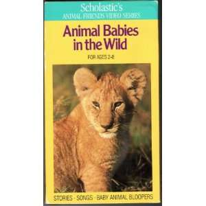 Animal Babies in the Wild (Scholastics Animal Friends