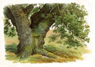 Calling all Artists and Painters, do you have trouble painting trees