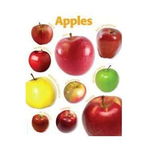 Teachers Friend 978 0 545 11893 4 Apples Photo Chart