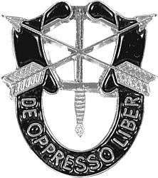 SPECIAL FORCES SF Hat Pin DE OPPRESSO LIBER