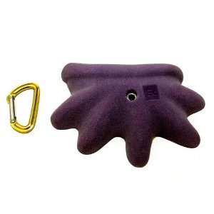 Element Climbing   Climbing Holds, Chloroform