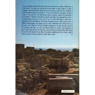 The Search for a Lost Roman City David Soren; And Jamie James Books
