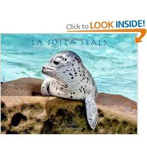 La Jolla Seals Images of the Casa Beach harbor seal