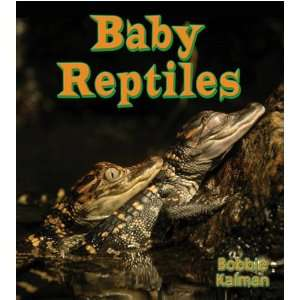 Fun to Learn about Baby Animals) (9780778739739) Bobbie Kalman Books