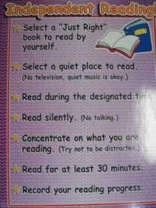 INDEPENDENT READING CHART   Teachers Friend TF2371
