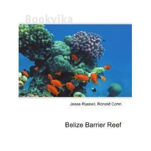 Belize Barrier Reef Ronald Cohn Jesse Russell Books