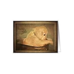 Miss you, sad golden retriever puppy in bucket Card