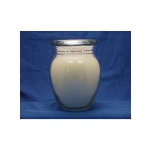 Early American Candle Fresh Fallen Snow 20 0z. Ginger Jar
