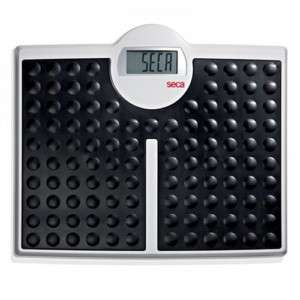 NEW Seca 813 Electronic flat scale w/ very high cap.