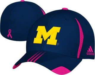 Michigan Wolverines adidas Pink Breast Cancer Awareness On Field