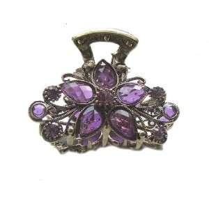 Gold Crystal Rhinestone Metal Hair Claw Clip (Hair Jewelry) (PURPLE