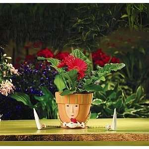 Krinkles by Patience Brewster, Flower Pot with Silk Flower