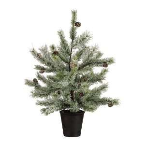 24 Pine Tree W/Pine Cone in Pot Snow (Pack of 2)