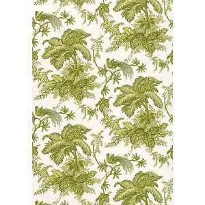 Coconut Grove Leaf by F Schumacher Wallpaper Home Improvement
