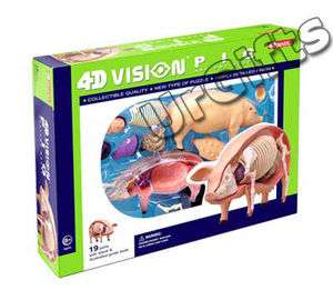 4D Vision Puzzle Animal Anatomy Series 3D Model NEW Pig